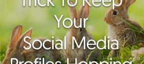 One Simple Trick To Keep Your Social Media Profiles Hopping
